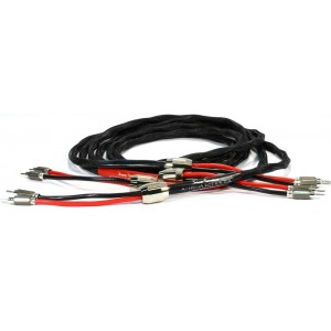 Black Rhodium Athena DCT++ Speaker Cable - Terminated Pairs